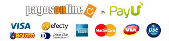 Paga online de manera segura